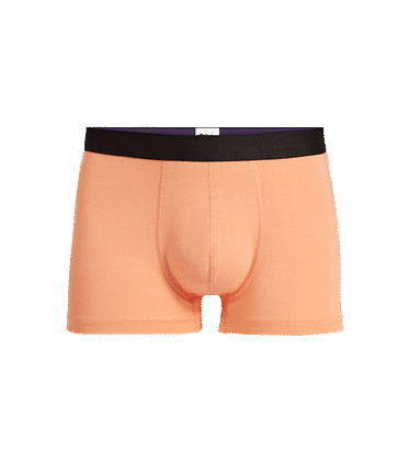 Men's Trunk in Cantaloupe