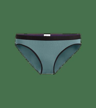 Women's Bikini in Goblin Blue