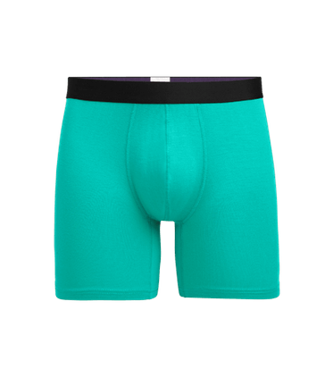 Men's Boxer Brief in Minty Fresh