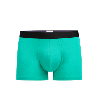 Men's Trunk in Minty Fresh