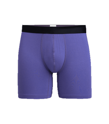 Men's Boxer Brief in Grape