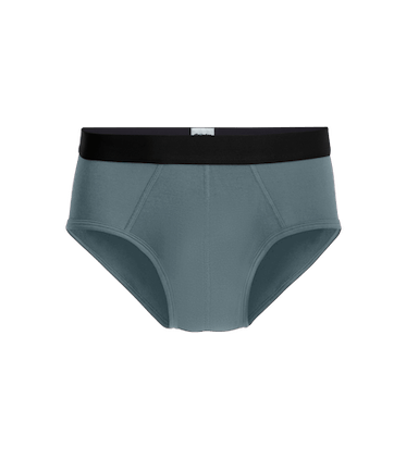 Men's Brief in Goblin Blue