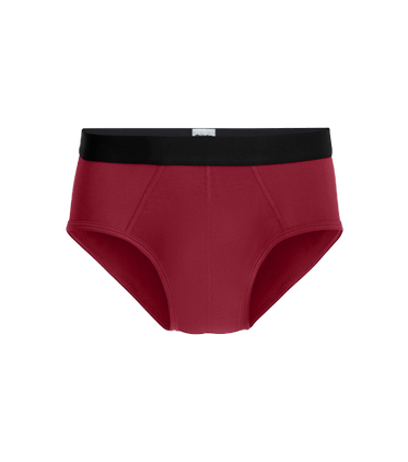 Men's Brief in Cabernet