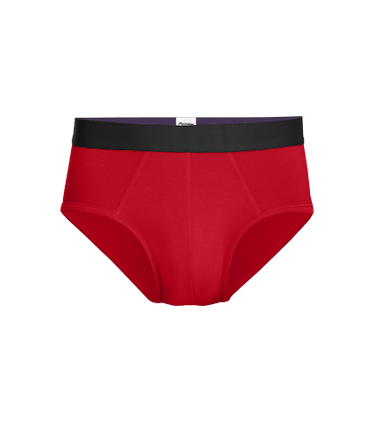 Men's Brief in Goji Berry
